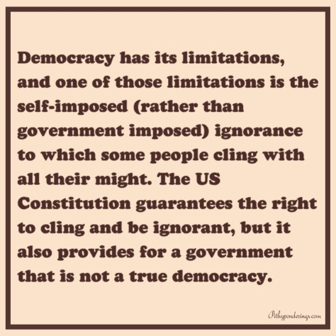 Constitutionality of Ignorance
